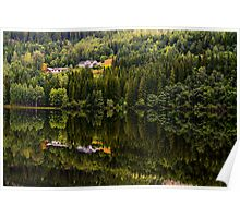 Reflected nature Poster