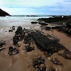 Rocks In Mewslade Bay - Wales by Samantha Higgs
