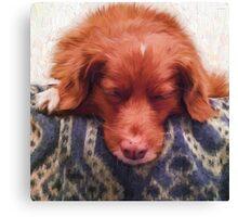 """""""Kaya Sleeping"""" Canvas Print"""