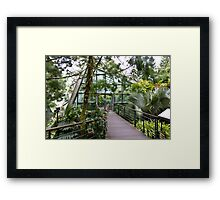 Cool house inside the National Orchid Garden in Singapore Framed Print