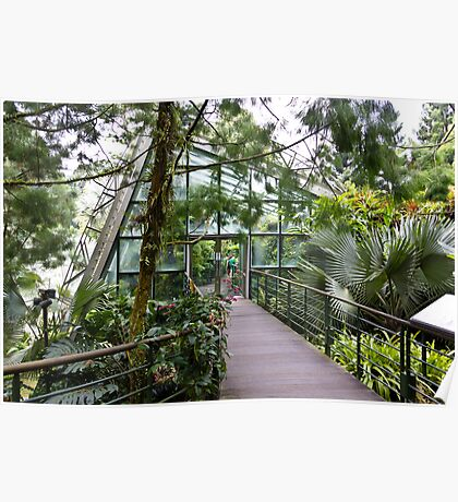 Cool house inside the National Orchid Garden in Singapore Poster