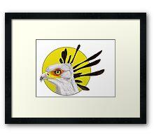Secretary Bird Framed Print