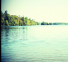 Lomography Photograph Lake Trees Blue Green  by PopPopPhoto