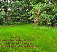 Thou Wilt Shew Me the Path of Life by aprilann