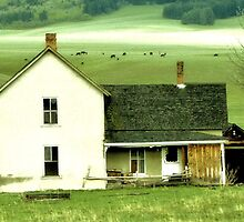 Old Mountain Home by aprilann