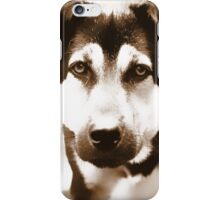 A dog's eyes - iphone case iPhone Case/Skin