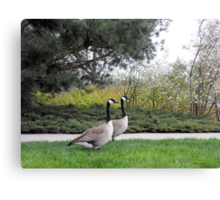 Lovers Taking a Stroll Canvas Print