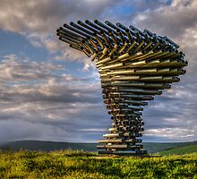 Dawn at the Singing Ringing Tree by The Walker Touch