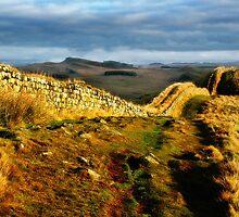 Hadrian's Wall on Hotbank Crag - C11 by Joan Thirlaway