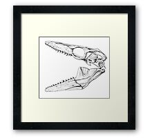 Eater of Molluscs Framed Print