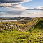 Hadrian's Wall on Hotbank Crag looking east. by Joan Thirlaway