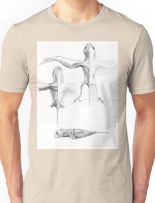 Anurognath Muscle Study T-Shirt