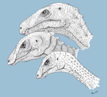 Morrison Dinosaurs 1 Kids Clothes
