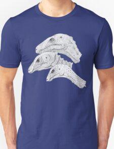 Morrison Dinosaurs 1 T-Shirt