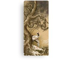 Wound Canvas Print