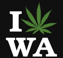 I Cannabis Washington by MarijuanaTshirt