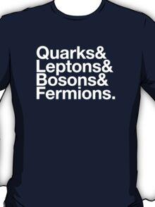 Quarks & Leptons & Bosons & Fermions. - white design T-Shirt