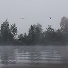 Foggy Morning Fishing  #9 by gypsykatz