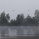 Foggy Morning Fishing  #9 by gypsykatz