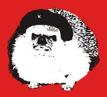Che Erizo!(Hedgehog!) by trebory6