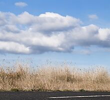 On the Road Again, Somewhere near Kyneton, 2012 by Liza Clements