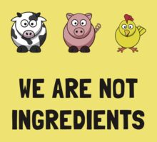 Not Ingredients Kids Clothes