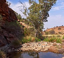 Tupul waterhole #3 by Roger Neal