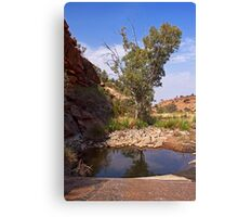 Tupul waterhole #3 Canvas Print