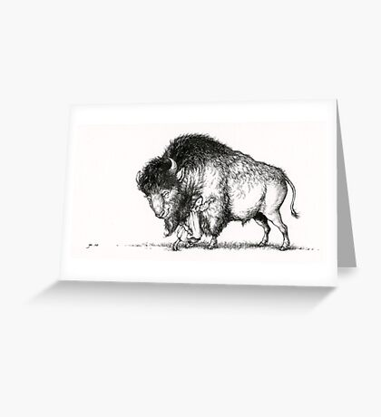 The Hugs Bison Greeting Card