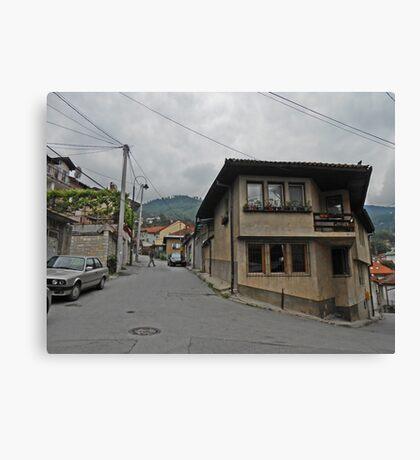 A house Canvas Print