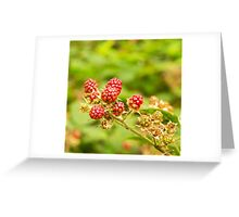Hedgerow Foraging Greeting Card