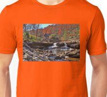Postcard From West Virginia  Unisex T-Shirt