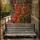 A touch of autumn © by Dawn M. Becker
