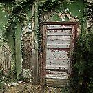 secret doors 4 by Nikolay Semyonov
