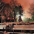 Bowring at Night by fixtape