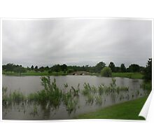 A slightly flooded Lisle Community Park Poster