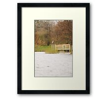 Perched Crane Framed Print
