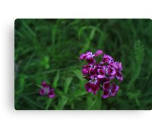 Springtime Flowers Canvas Print