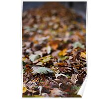 crunchy leaves Poster