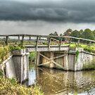 Old wood bridge  by Peter Wiggerman