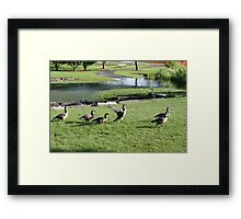 A Warning to Stay Back Framed Print