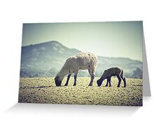 Grazing II Greeting Card