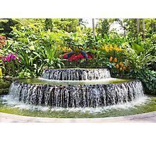 Ornamental attraction opposite the entrance of the National Orchid Garden in Singapore Photographic Print