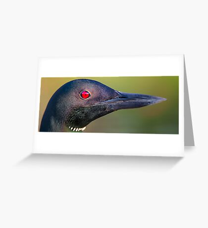 Loon Portrait Greeting Card