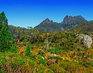 Walk to Cradle Mountain by Yukondick