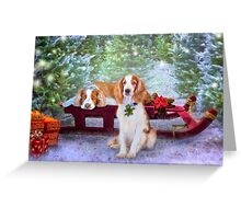 First snow at the tree farm with the welshies Greeting Card
