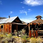 Desert Refuge by marilyn diaz