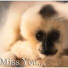 I Miss you... (Card) by Caryl Perry