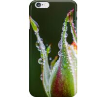 Rose bud with dew iPhone Case/Skin