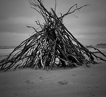 Bonfire on the Beach by Andrew Turley